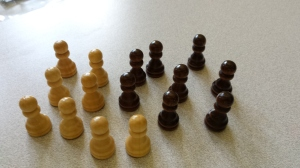 pawns - little guys that take up the whole second row