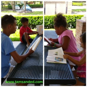 Neighborhood pavilion provides a shady place for outdoor reading.